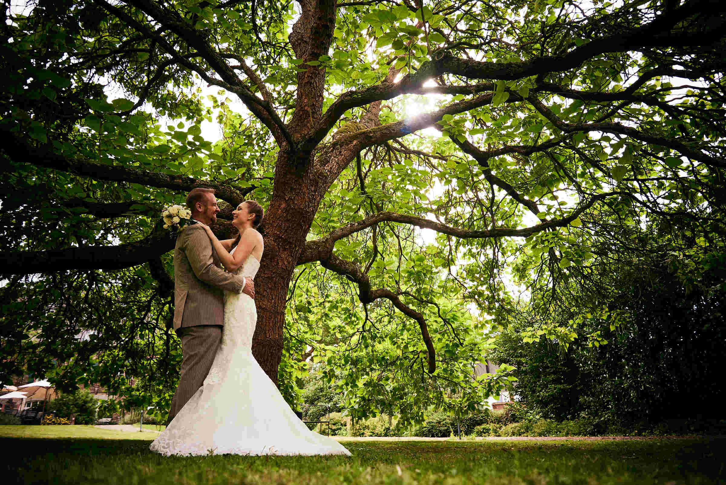 Frisch verheiratetes Brautpaar unter einem Baum beim Weinromantikhotel Richtershof